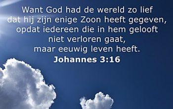 Johannes 3 vers 16 bij Jehovah's Getuigen