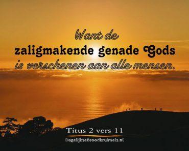 Christus is God Zelf in Nieuwe Wereldvertaling Jehovah's Getuigen